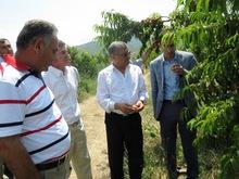 ՀՀ գյուղատնտեսության  փոխնախարարը  հանդիպեց     Նոյեմբերյանի տարածաշրջանի այգեգործների հետ