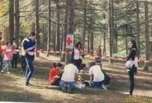 Հայկական Կարմիր խաչի ընկերության  տարածաշրջանային մրցումներ