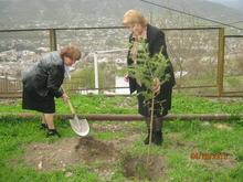 ,,100 ծառ 100-րդ տարելիցի առթիվ,, խորագրով ծառատունկ մարզկենտրոն Իջևանում